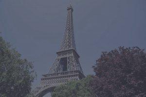 Paris France Cute Baby Infant Formula manufacturer